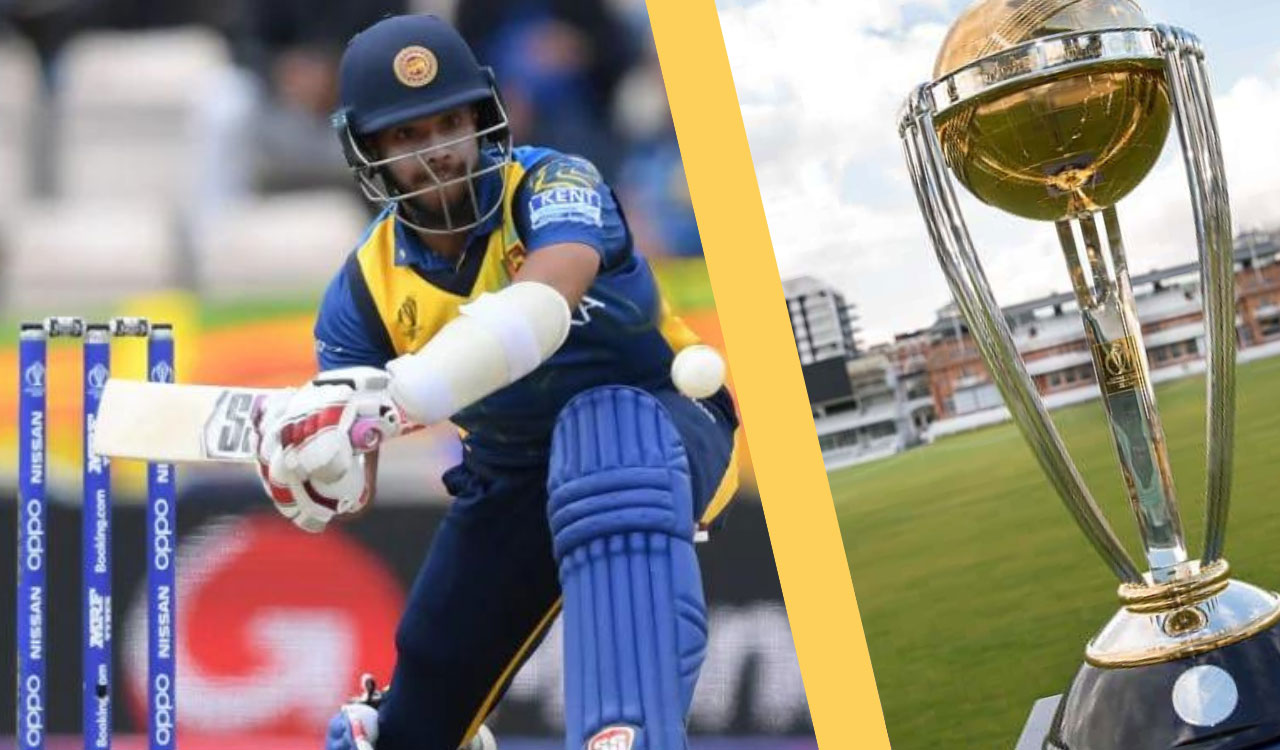 best cricket betting strategy